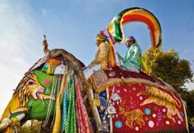 Ride with an Indian Elephant